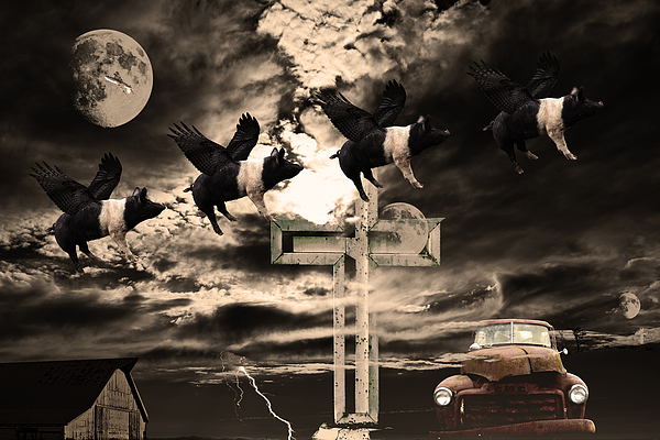 When Pigs Fly Print by Wingsdomain Art and Photography