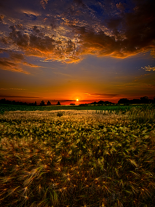 When Time Stood Still Print by Phil Koch