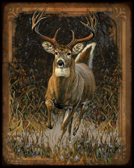 Whitetail Deer Print by JQ Licensing