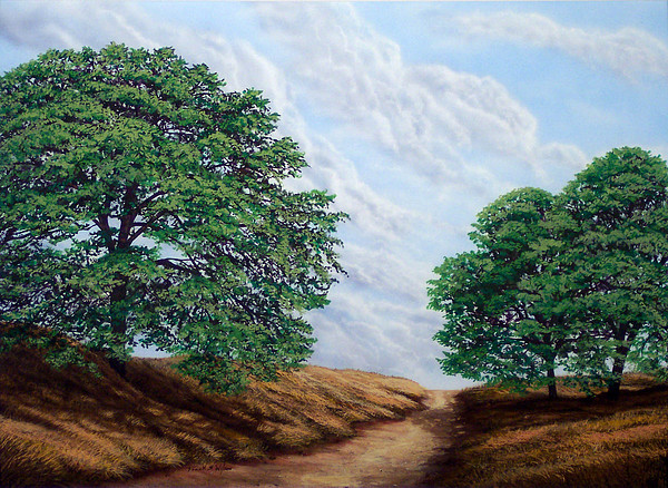 Windblown Clouds Print by Frank Wilson