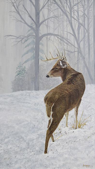 Winter Coat Buck Print by Johanna Lerwick