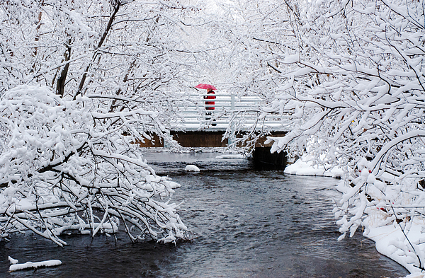 Winter Crossing Print by Ron Day