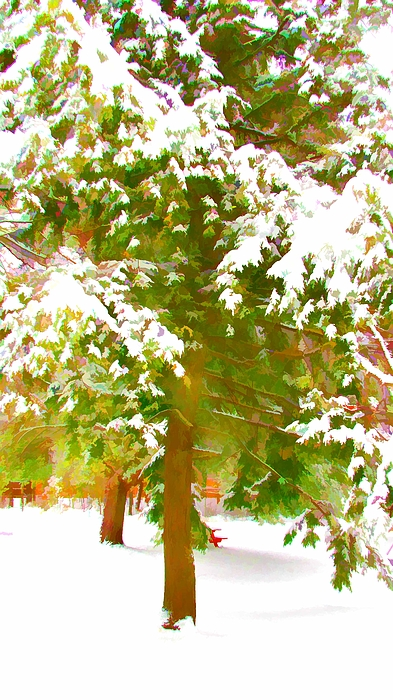 Winter In  Catskills Print by Lanjee Chee