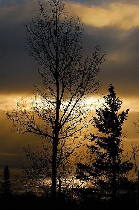Winter Sunrise 2 Print by Sebastian Musial