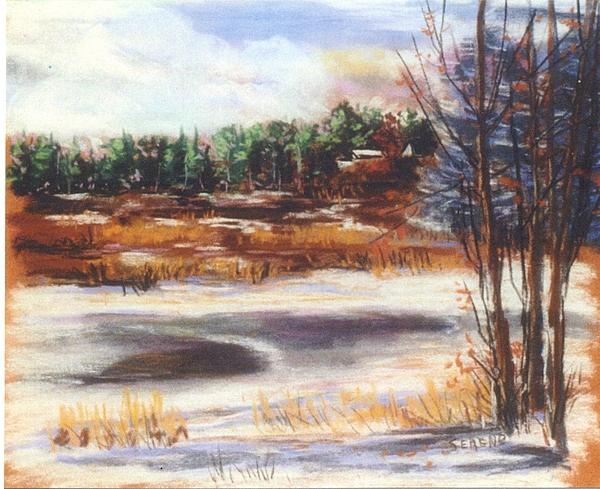Winter's Light Print by Sandy Sereno