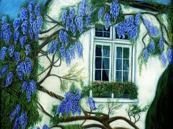 Wisteria Window Print by Jan Amiss