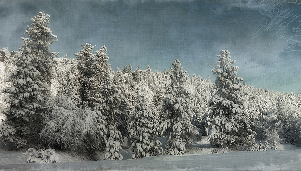 With Love - Winter Print by Reflective Moment Photography And Digital Art Images