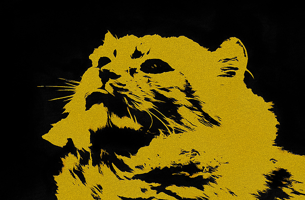 Sergey Lukashin - Yellow cat