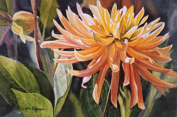 Yellow Dahlia Print by Sharon Freeman