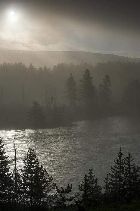 Yellowstone River Fog Print by Sandra Bronstein