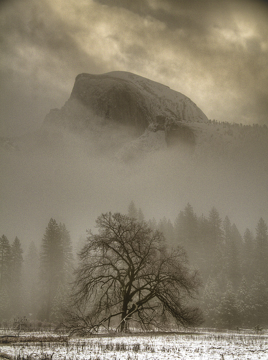 Connie Cooper-Edwards - Yosemite in the Winter