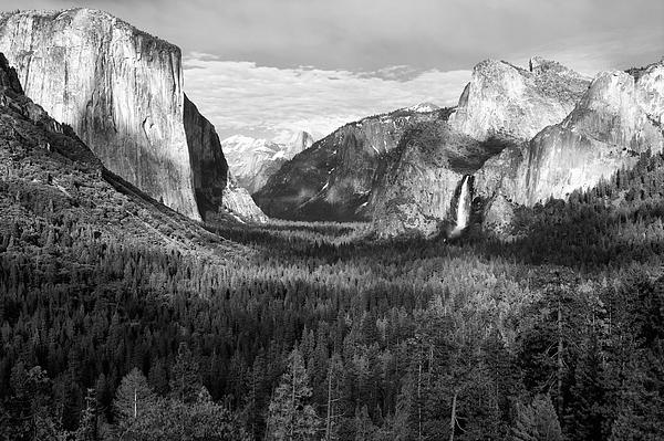 Yosemite Valley Print by Sandra Bronstein