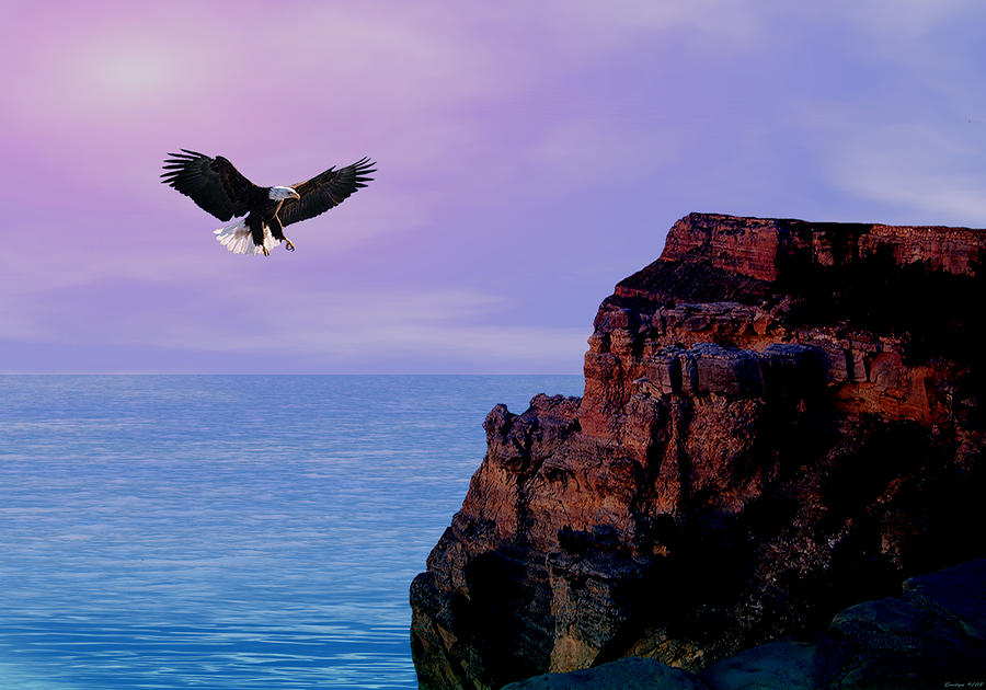 Eagle Digital Art -  Im Free To Fly by Evelyn Patrick
