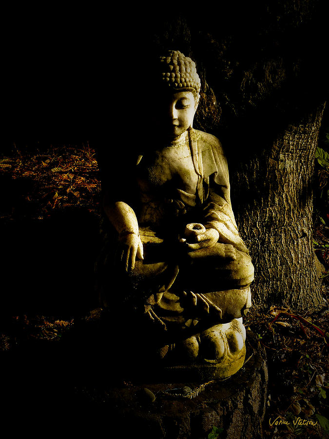 Buddha Photograph -  Seeing The Light by Sabine Stetson