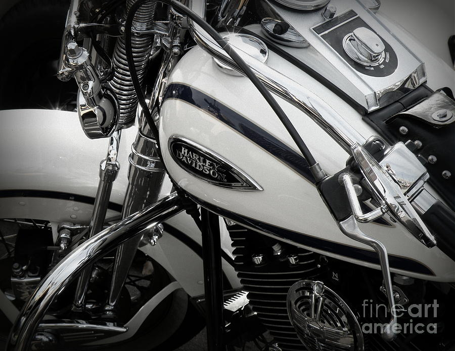 Harley Davidson Photograph - 1 - Harley Davidson Series  by Lainie Wrightson