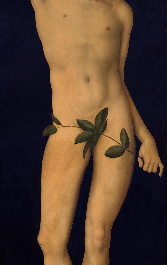 Garden Of Eden; Old Testament; Nude; Apple Painting - Adam by The Elder Lucas Cranach