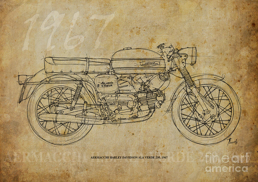 Harley Davidson Ala Verde 250 1967 Drawing - Aermacchi Harley ...