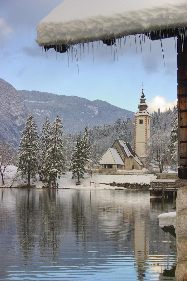 Alpine Winter Clarity Photograph