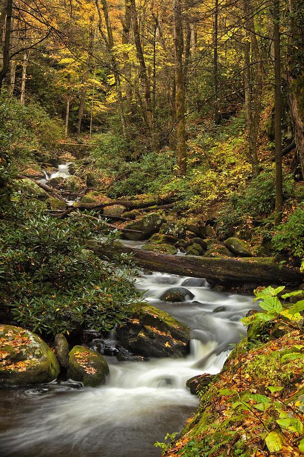 Rapids Photograph - Autumn Stream by Andrew Soundarajan