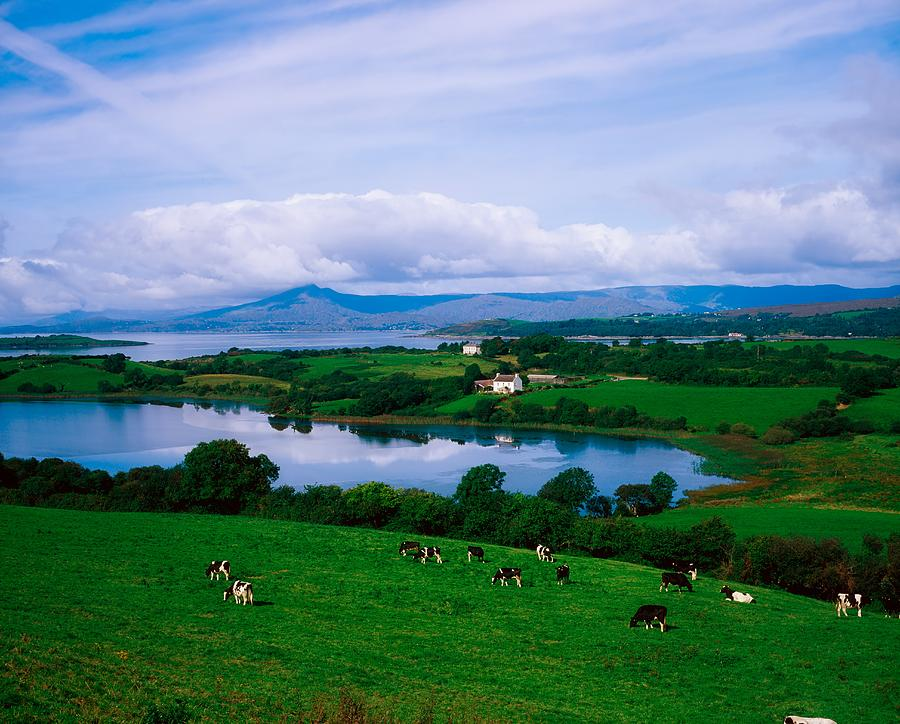 Bantry Photograph - Bantry Bay, Co Cork, Ireland by The Irish Image Collection