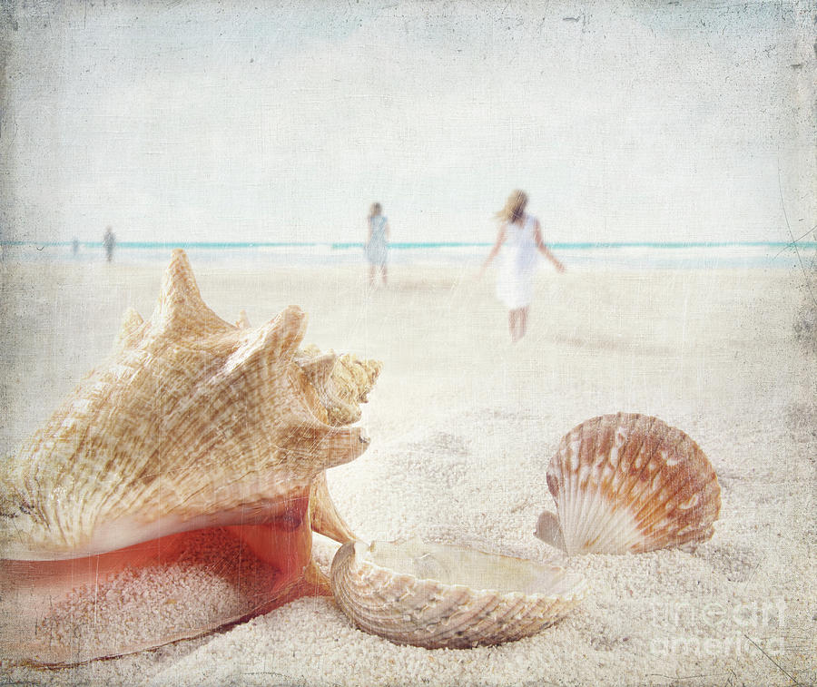 Aquatic Photograph - Beach Scene With People Walking And Seashells by Sandra Cunningham