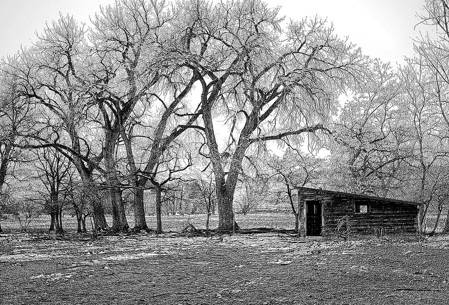 Fine Wall Art Photography. Black And White Wall Art. Black And White Photography. Black And White Winter Photography. Old Building Black And Whiote Photography. Black And White Metallic Photography.fine Art Metallic Greeting Cards. Fall Photography. Black And White Fall Pictures.  Photograph - Days Past by James Steele