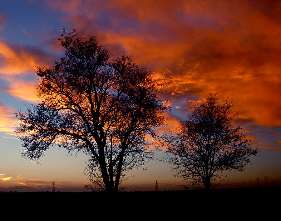 Sunset Photograph - Fire In The Sky by Peter Piatt
