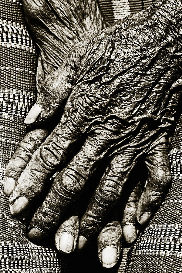 Folded Hands Photograph