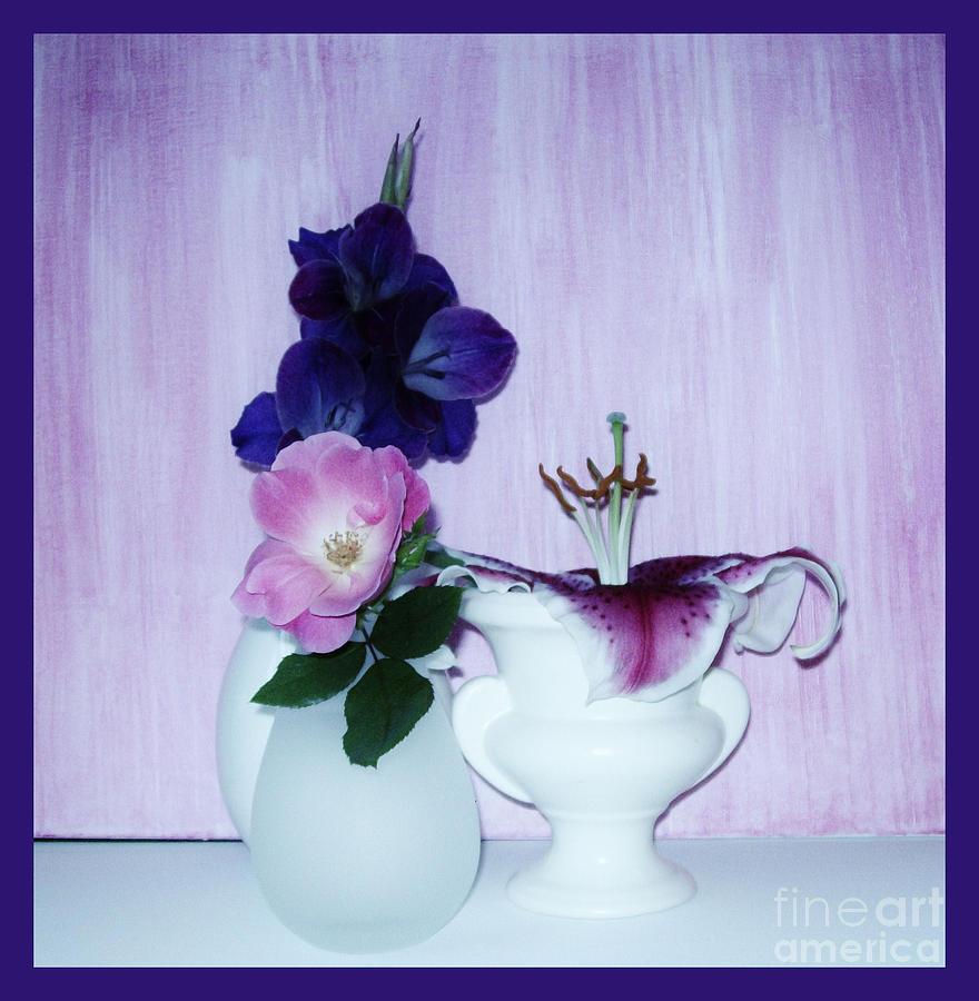 Photo Photograph - Full Bloom by Marsha Heiken