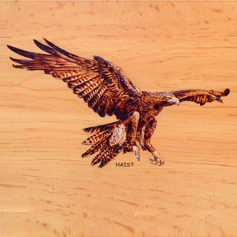 Pyrography - Golden Eagle by Ron Haist