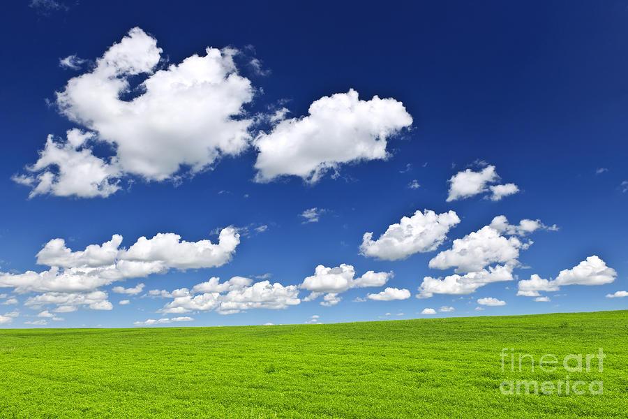 Field Photograph - Green Rolling Hills Under Blue Sky by Elena Elisseeva
