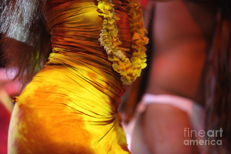 Dance Photograph - Hula Dancers by Nadine Rippelmeyer