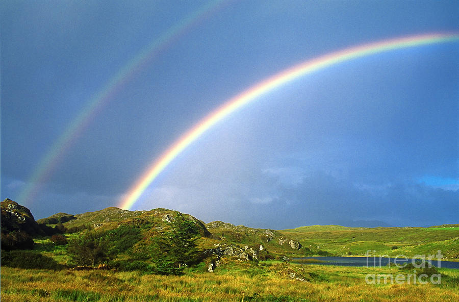 1000  images about RAINBOWS on Pinterest