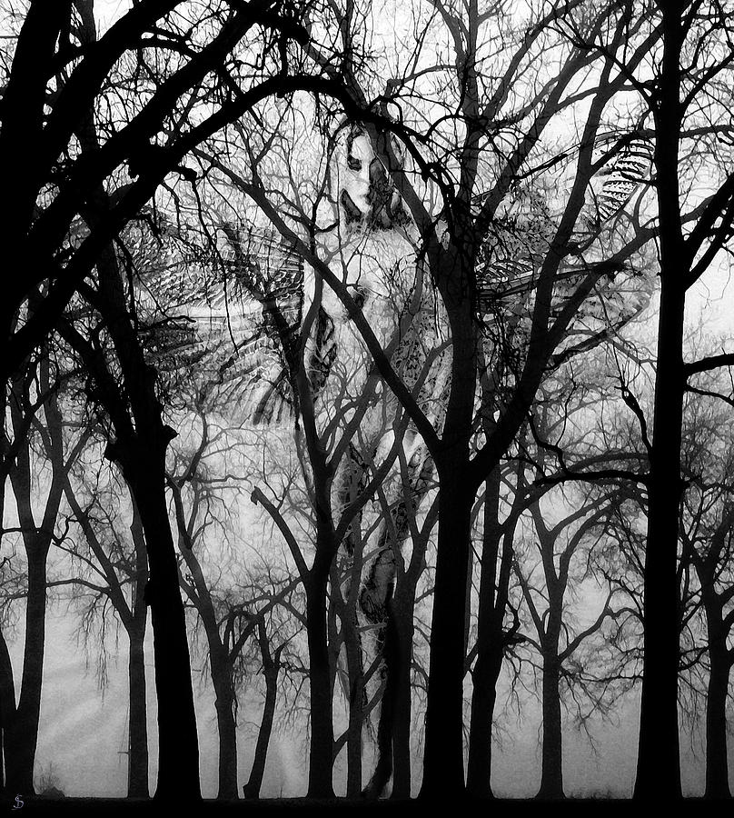 Leta Photograph by Ken Walker