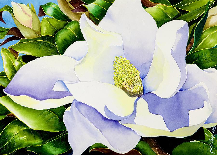 magnolia painting - photo #21