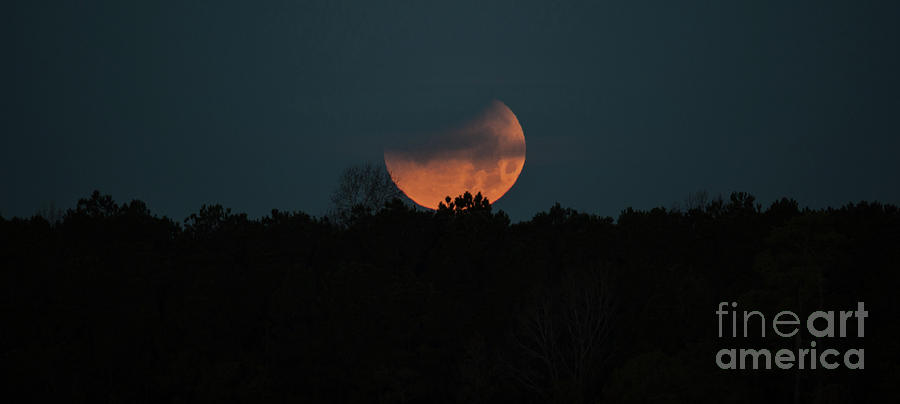Moon Dance Photograph