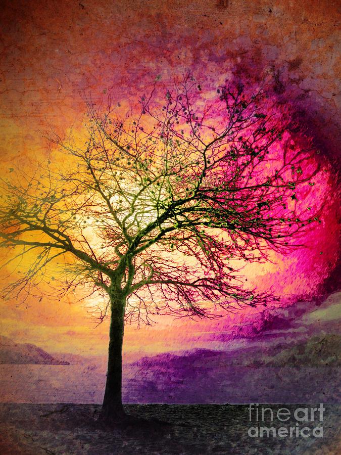 Tree Photograph - Morning Fire by Tara Turner