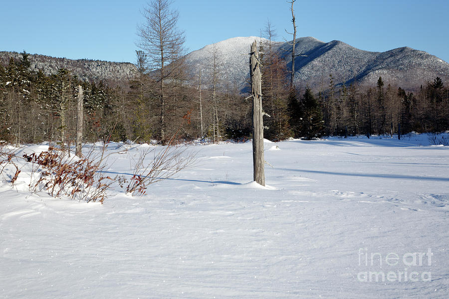Mount Carrigain - White Mountains New Hampshire Usa Photograph