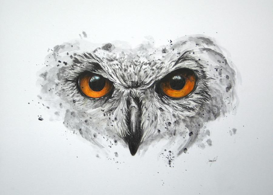 owl mixed media by aaron de la haye