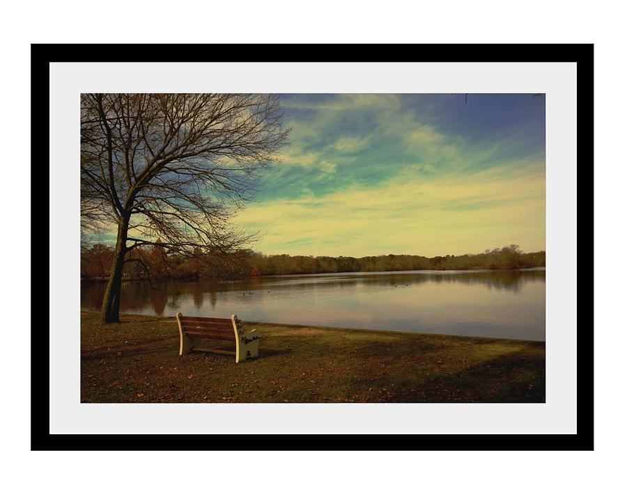 Park Photograph - Park by Dana Flaherty