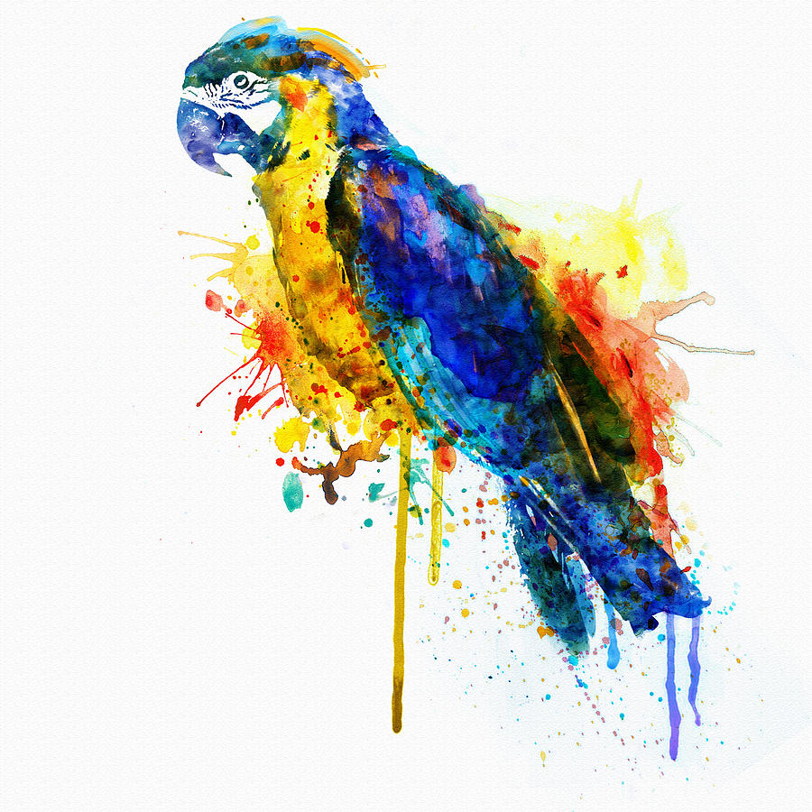 Parrot Watercolor Digital Art By Marian Voicu