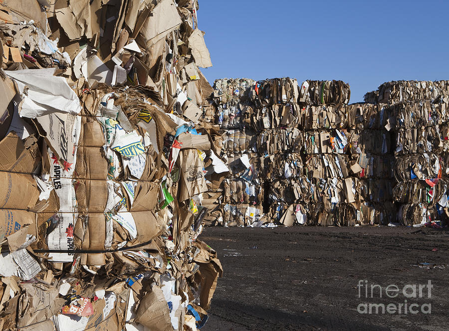 Recycling Facility Photograph