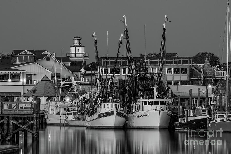 Shem Creek At Night In Black And White Photograph