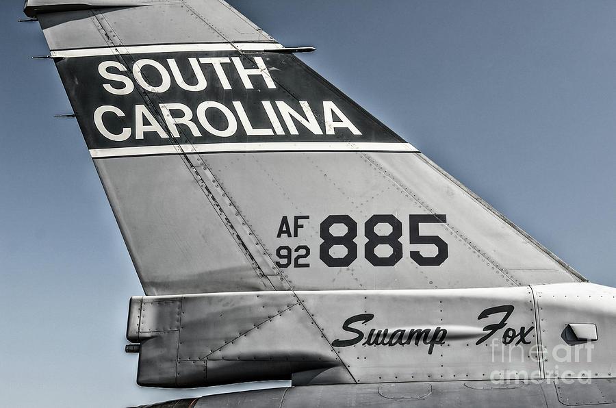 South Carolina Swamp Fox Photograph