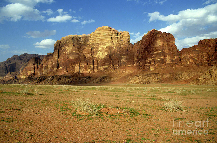 Arid Photograph - Sparse Tussock And Rock Formations In The Wadi Rum Desert by Sami Sarkis
