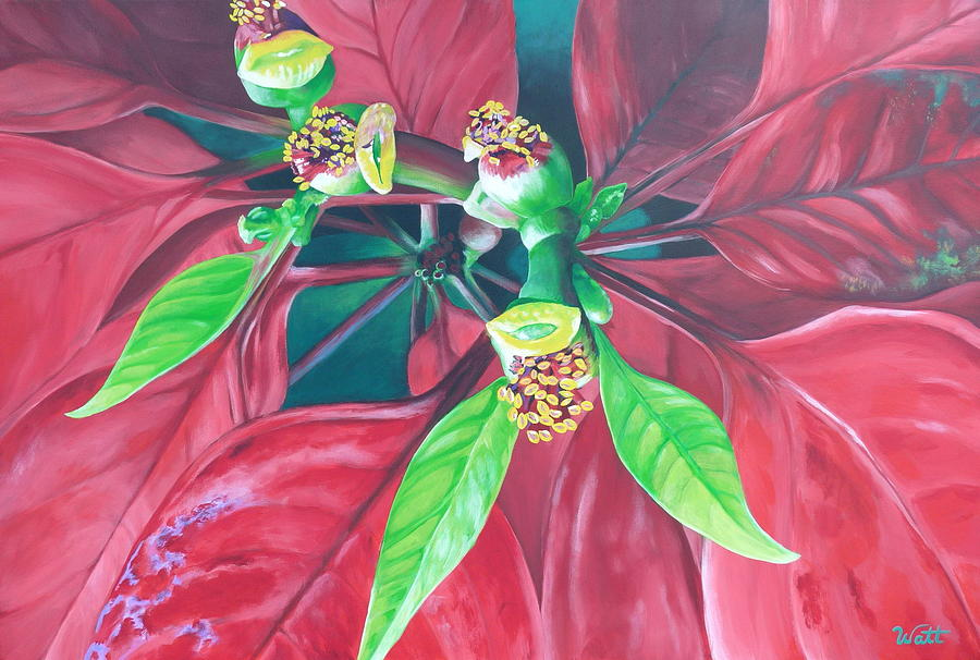 Poinsettia Painting - Still Thriving In May by Tammy Watt