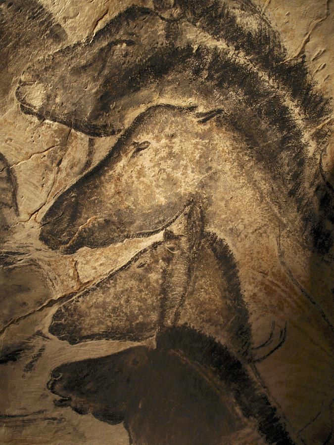 Animal Photograph - Stone-age Cave Paintings, Chauvet, France by Javier Truebamsf