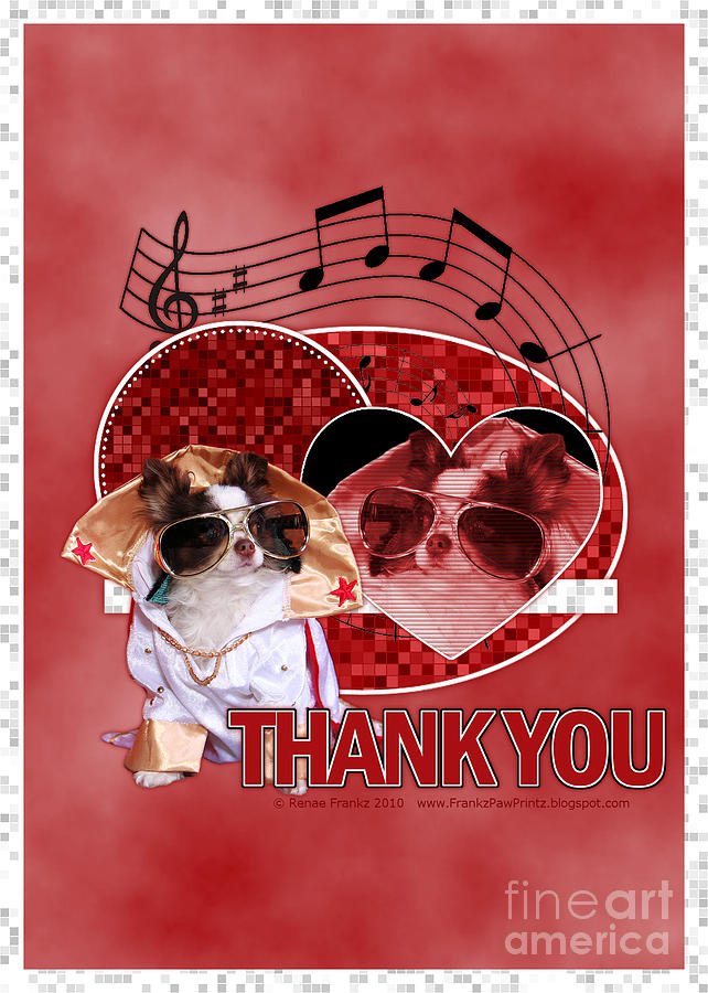 Chihuahua Digital Art - Thank You - Thank You Very Much by Renae Laughner