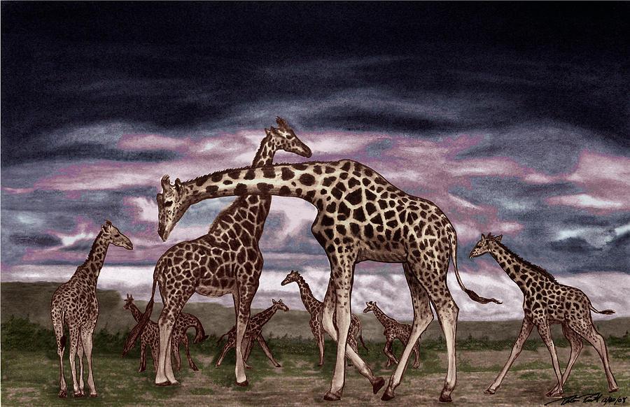 The Herd Drawing - The Herd by Peter Piatt