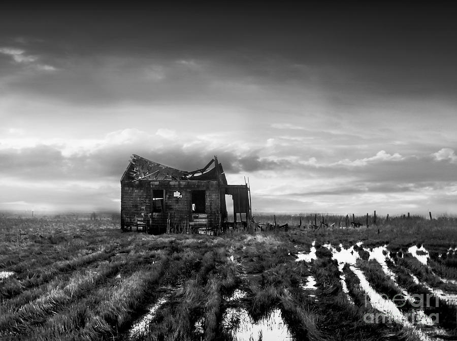 The Shack Photograph